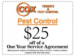 Coupon $25 off of a one year service agreement